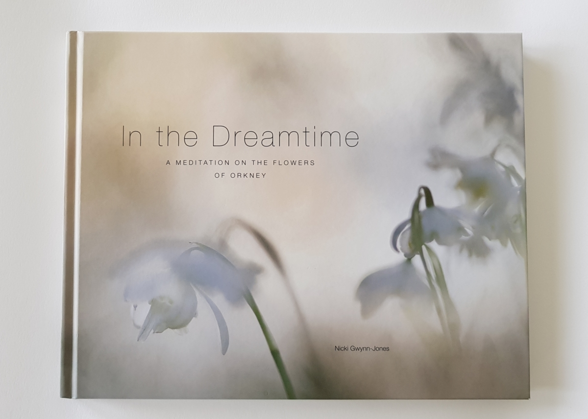 In The Dreamtime by Nicki Gwynn-Jones